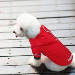Dog Snowsuit for Small Dog