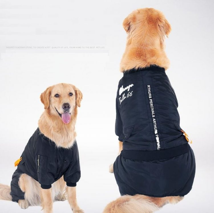 Dog Jumpsuit