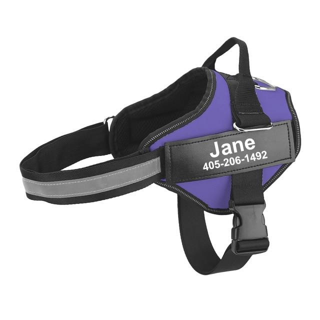 personalized dog harness purple