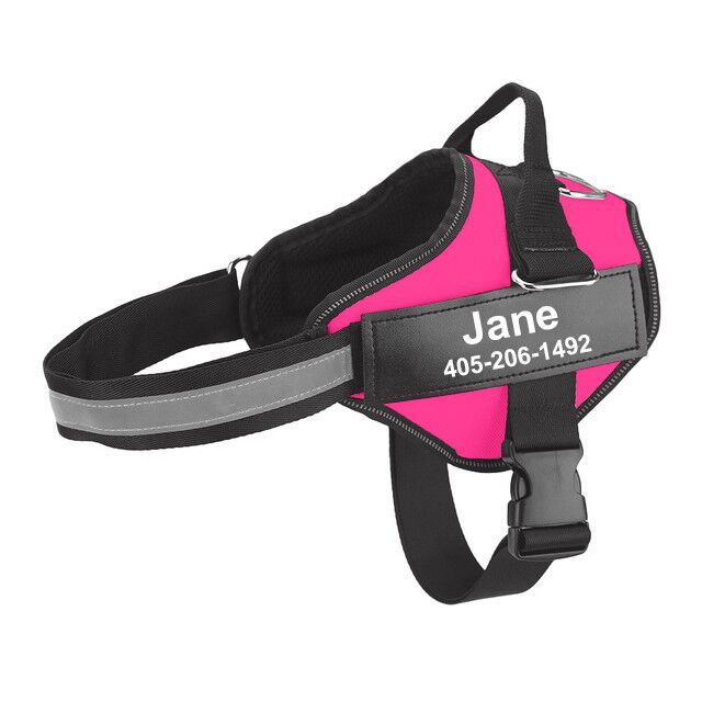 personalized dog harness rose red
