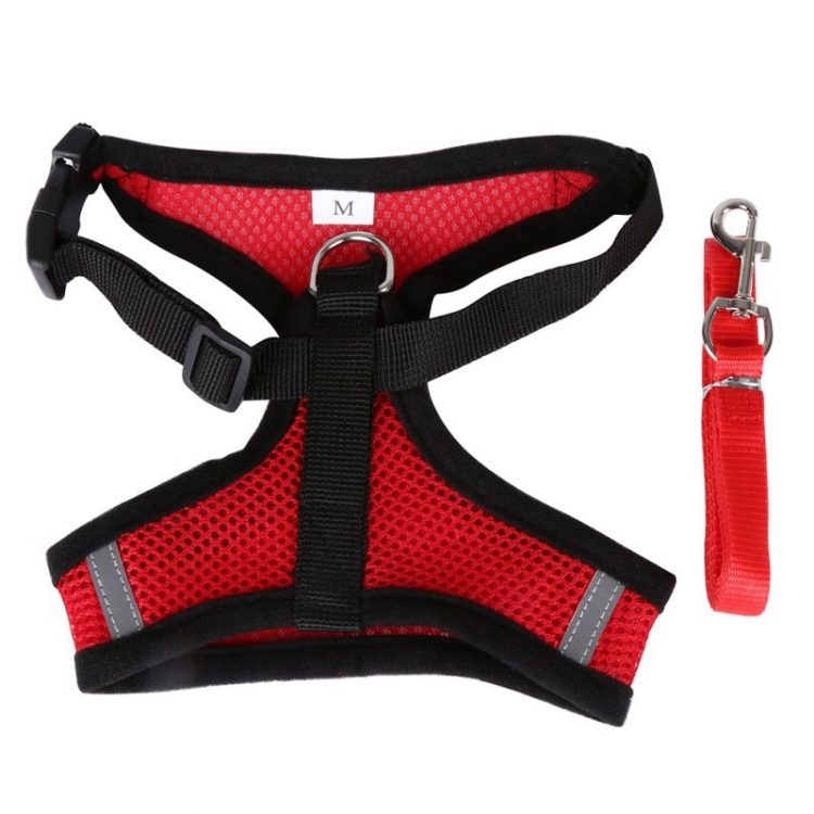 cute dog harness red