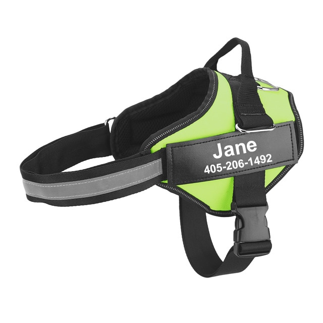 personalized dog harness green