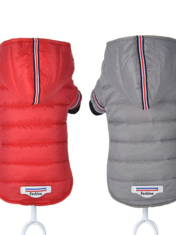 Chic Dog Jacket | Dog Life Jacket | Waterproof Dog Coats