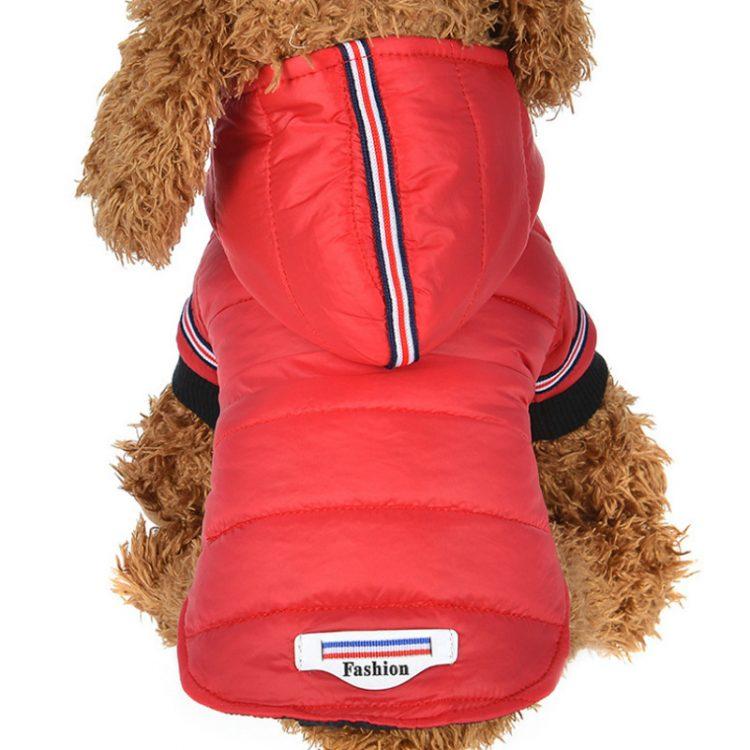 Chic Dog Jacket | Dog Life Jacket | Waterproof Dog Coats