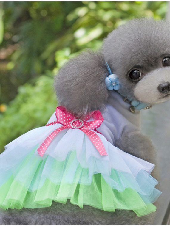 Lovely-Princess-Dog-Dress