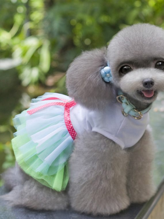 Lovely Princess Dog Dress