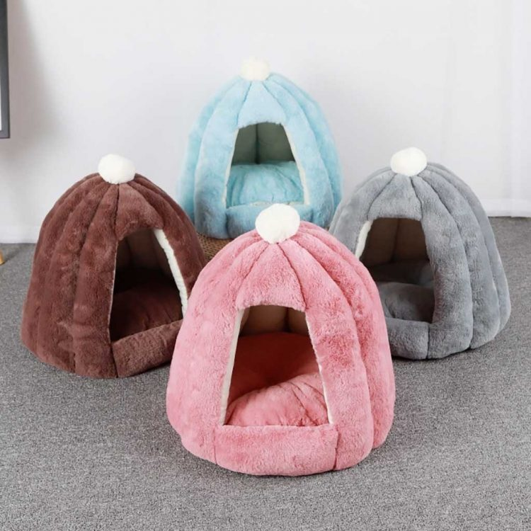 Adorable Dog Beds
