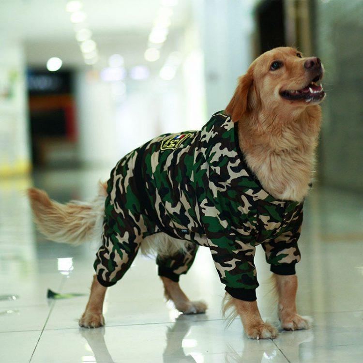 Large Dog Snowsuit   Waterproof Dog Snowsuit   Dog Winter Snowsuit