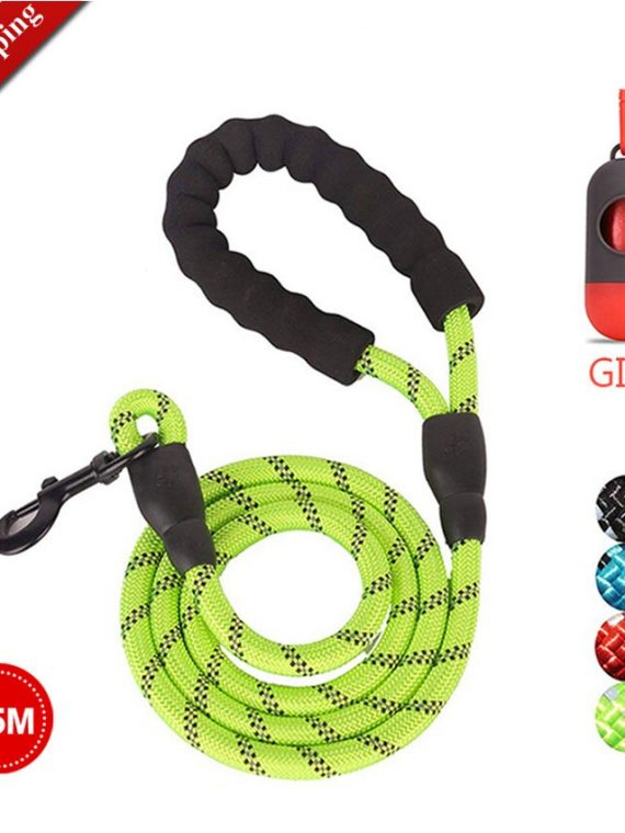 Climbing-Rope-Dog-Leash-|-Carabiner-Dog-Lead