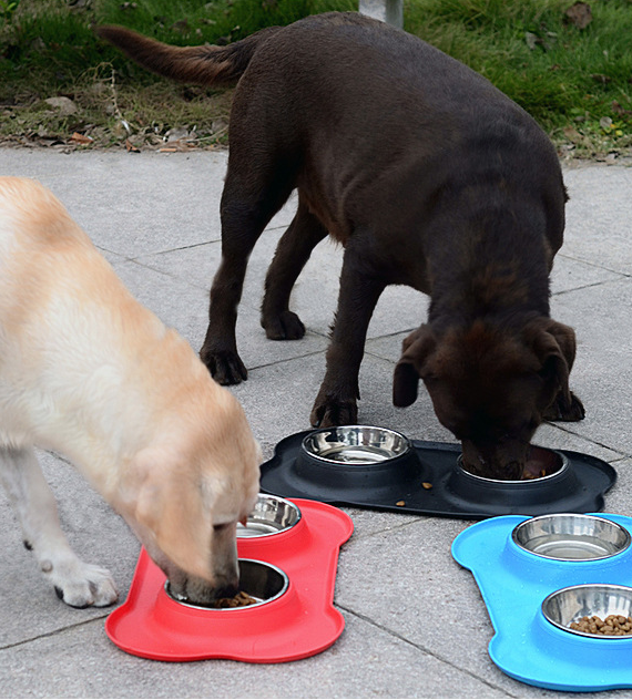 Double Dog Cat Bowls | Premium Stainless Steel Pet Bowls | Anti-Spillage, Anti-Slip