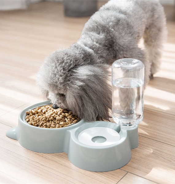Dog-Perfect-Bubble-Bowl—Automatic-Water-Drinking