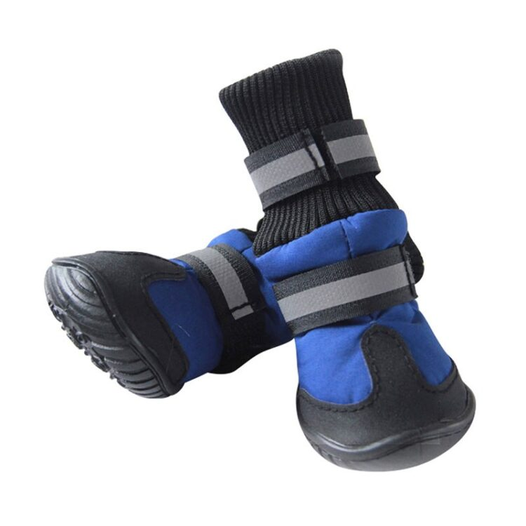 dog snow boots blue
