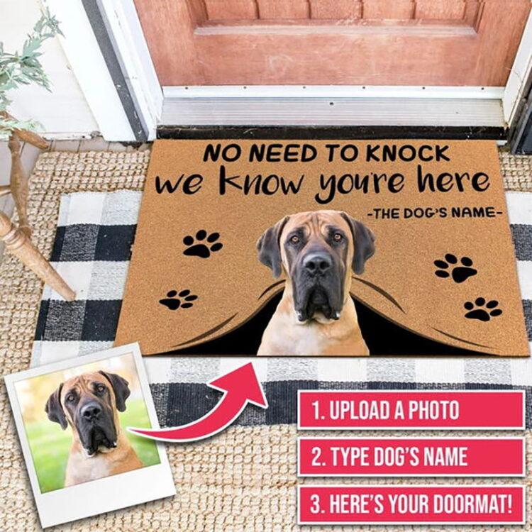 Custom Doormat Personalized giftsText Name Pet Dog Cat Photo No Need to Knock We Know You're Here,indoor/outdoor carpet Door mat