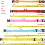 MEGA LED Safety Dog Collar