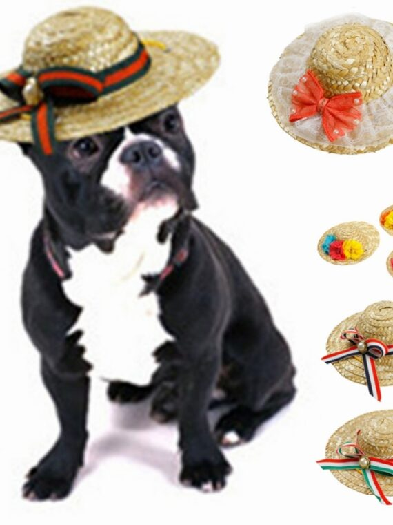 Straw-Hat-for-Dogs-with-Bow