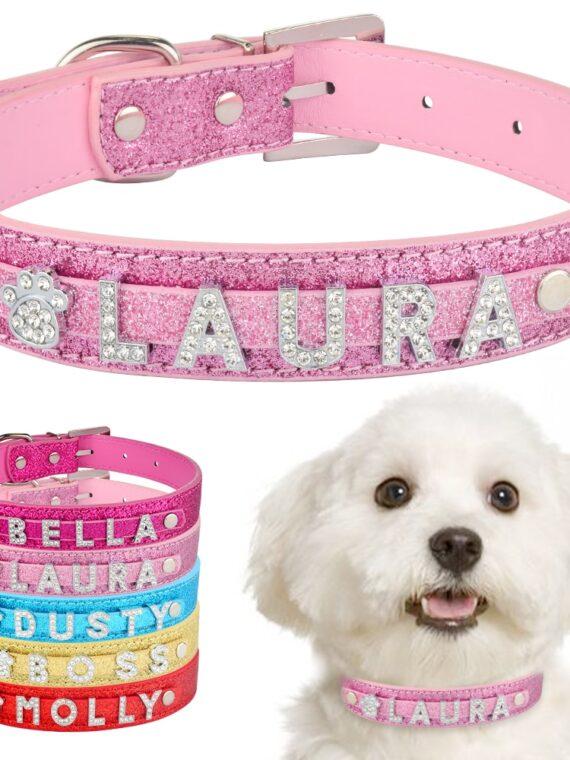 DogMEGA-Personalized-Dog-Collar-|-Custom-Dog-Collars-|-Custom-Leather-Dog-Collars