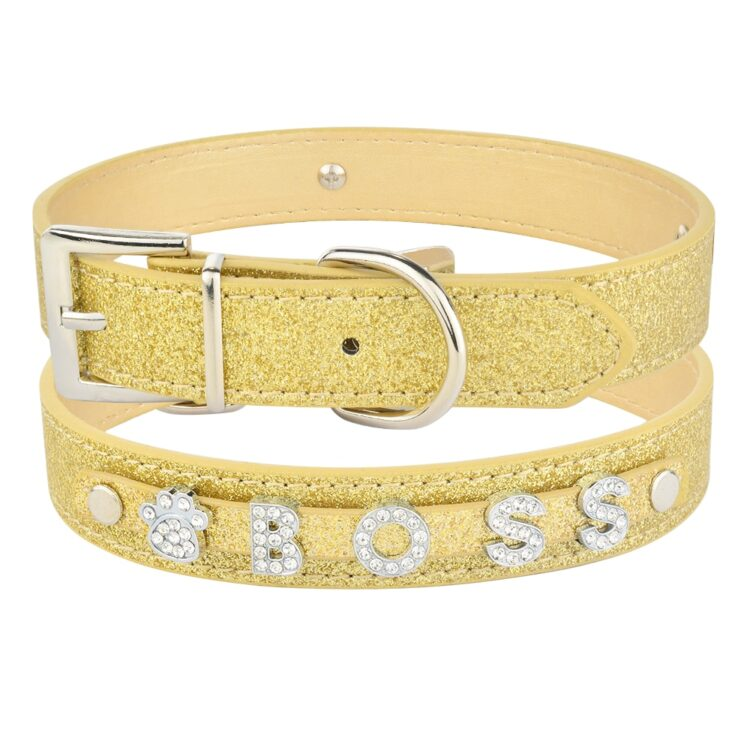 personalized dog collar gold