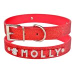 personalized dog collar red