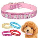 DogMEGA Personalized Dog Collar   Custom Dog Collars   Custom Leather Dog Collars