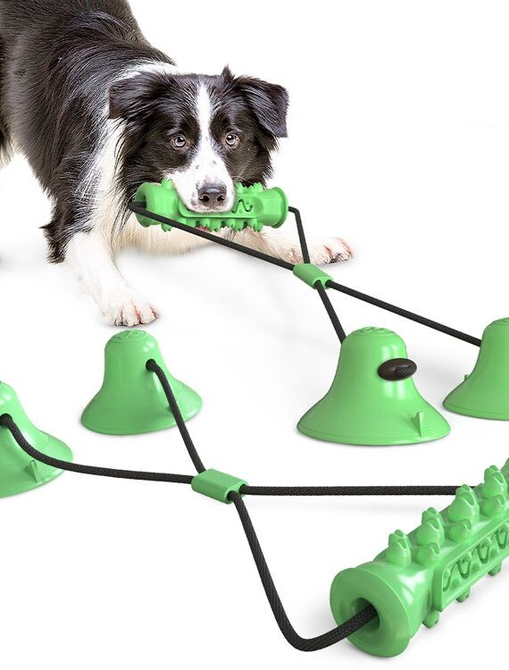 DogMEGA Best Teeth Cleaning Suction