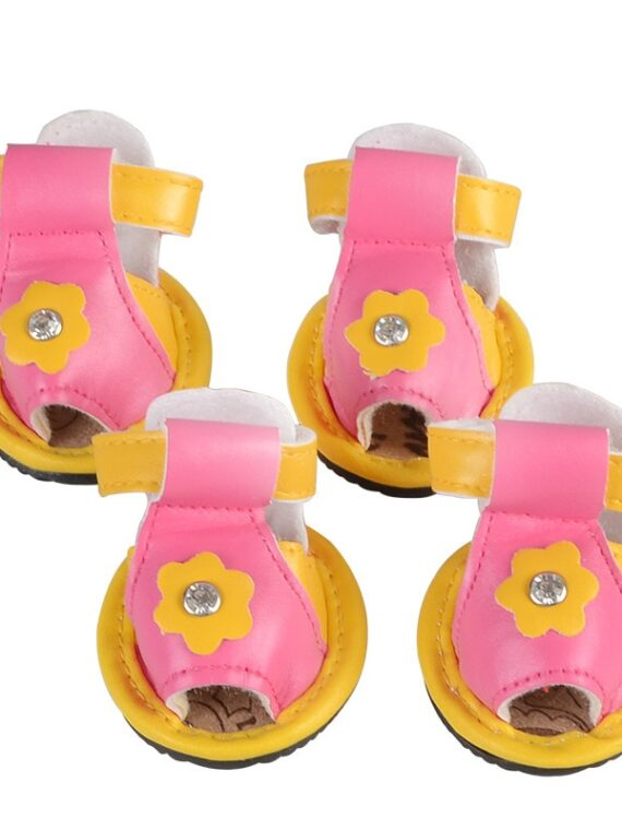 dog sandals