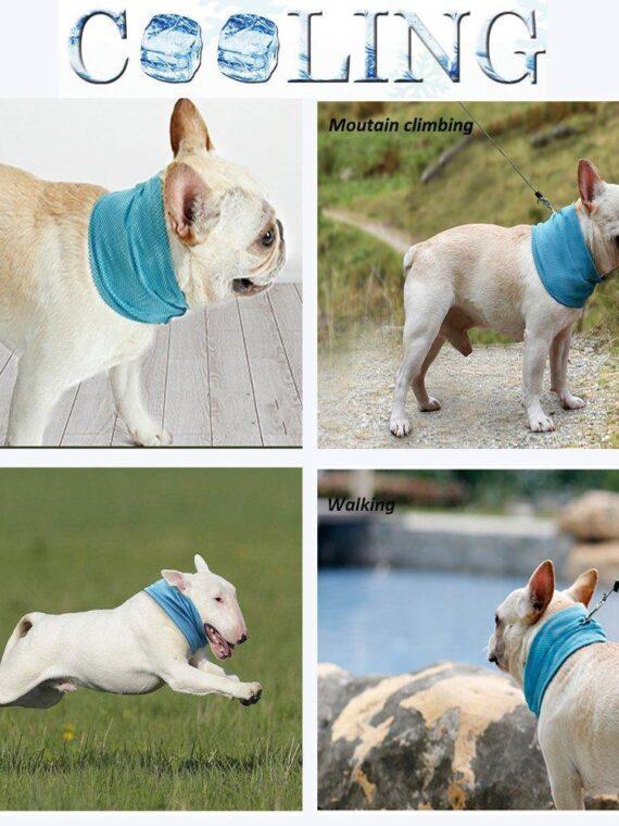 DogMEGA Cooling Dog Bandana