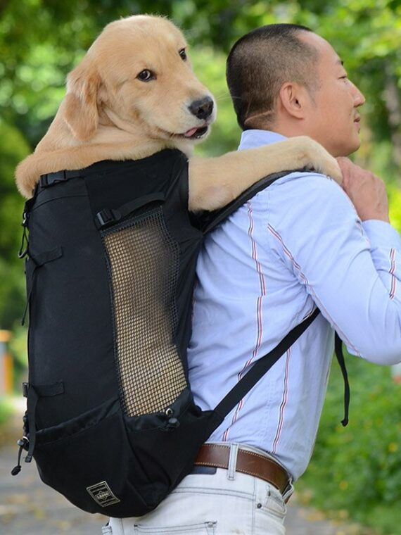 Adjustable-Pet-Dog-Outdoor-Travel-Backpack-For-Hiking-Cycling-Reflective-Carrier-Bag-For-Dogs-French-Bulldog[1]