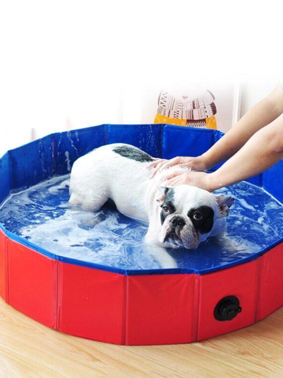 DogMEGA Foldable Dog Swimming Pool