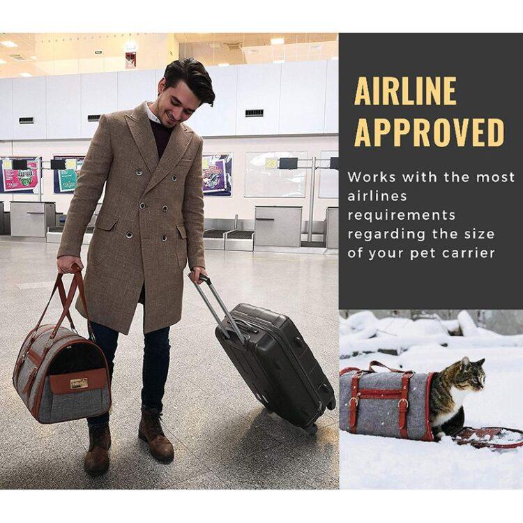 DogMEGA Premium Dog Travel Carrier