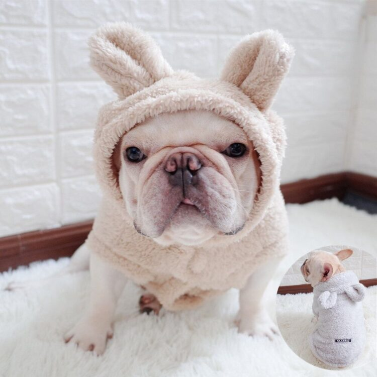 Bear Ear Hoodies for Small Dog
