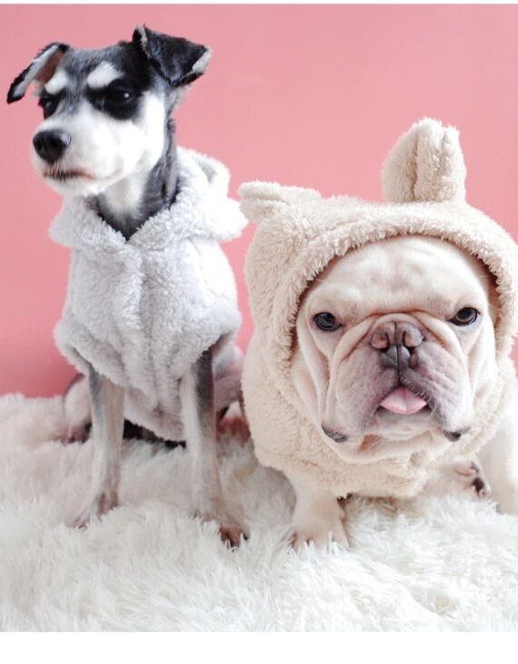 Bear Ear Hoodies for Small Dog (6)_compressed