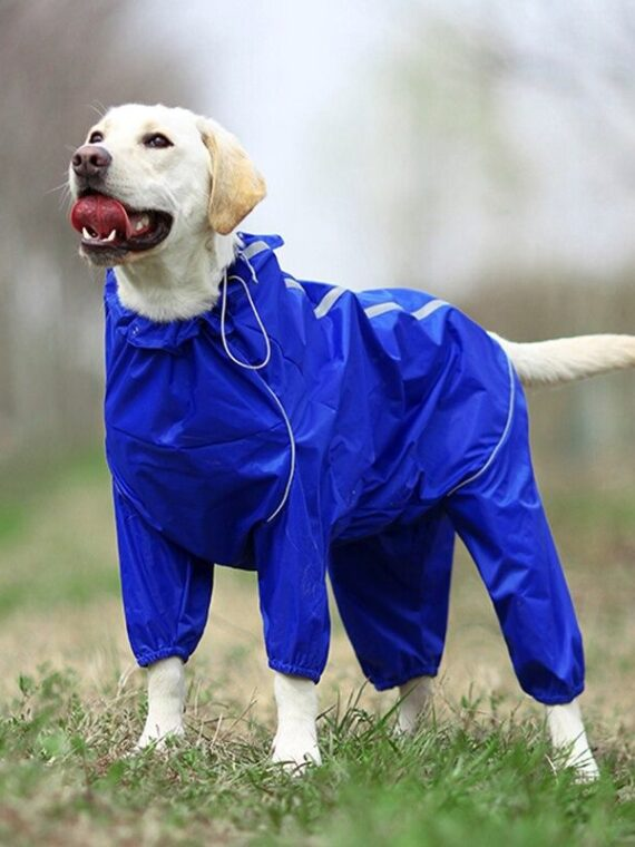 DogMEGA Reflective and Waterproof Raincoat for Dog (11)_compressed