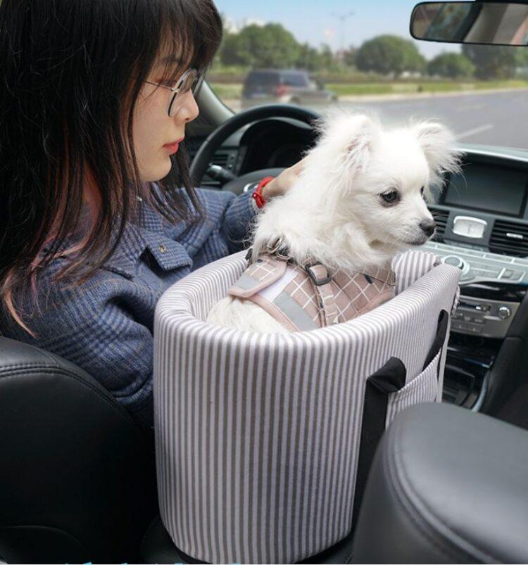Puppy Car Seat