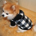 Autumn Winter Hooded Clothing for Dog
