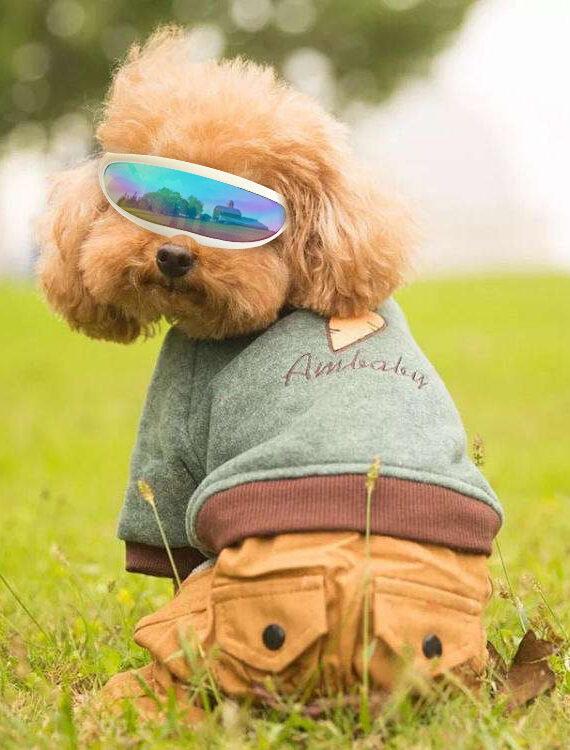 Waterproof Windproof Adjustable Dog Sunscreen UV Goggles