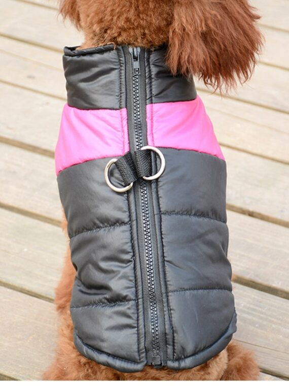 Padded-Dog-Coat-Down-Chihuhua-Teddy-Dog-Costumes-Vest-Autumn-Winter-Warm-Jacket-with-D-Ring[1]